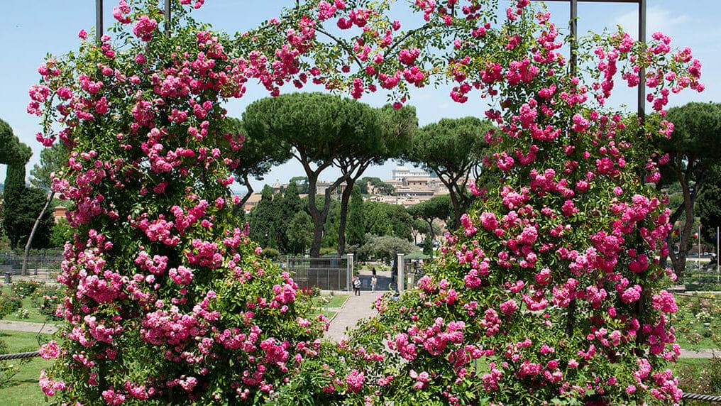 Rome pour les amoureux
